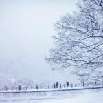 雪イベント