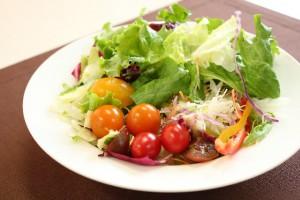 野菜 サラダ 食事